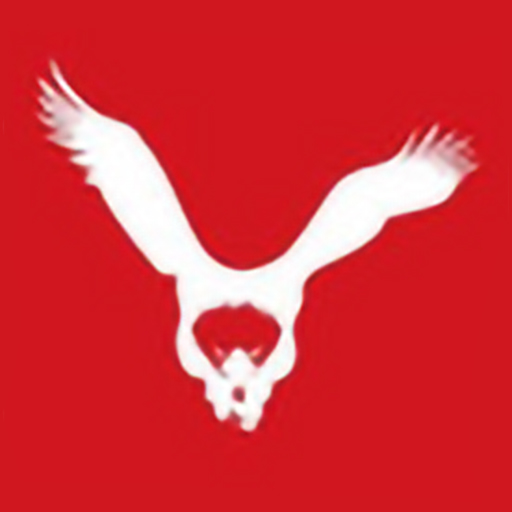 Athens Hawks Favicon